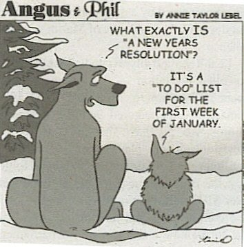 best new years resolutions